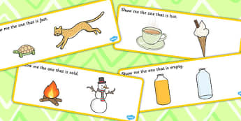 Show Me The Basic Concept Cards - concepts, SEN, SEN cards