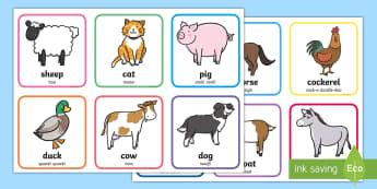 Cute Farm Animals Matching Cards - Farm Animals Display Poster - posters, displays, farms, visual, aniamls, farma nimals, fram, animal
