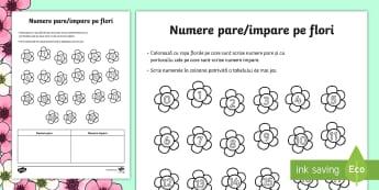 Numere pare și impare pe flori Fișă de lucru - Spring, primavara, joc, numere, pare, impare, par, impar, colorare, fisa de lucru, matematica, roman