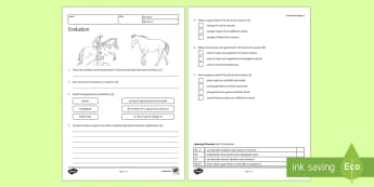 Evolution Homework Activity Sheet - Homework, variation ,evolution, darwin, natural selection, genes, species, gene, specie, offspring,