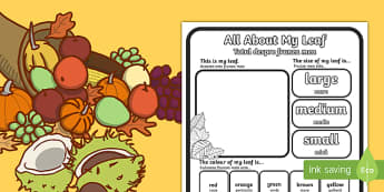 All About My Leaf Activity Sheet Leaves English/Romanian