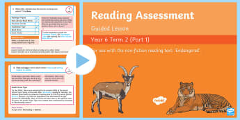 Year 6 Reading Assessment Non Fiction Term 2 Guided Lesson PowerPoint - Reading Assessment PowerPoints, SATs, reading comprehension, guided reading, test practise, endanger