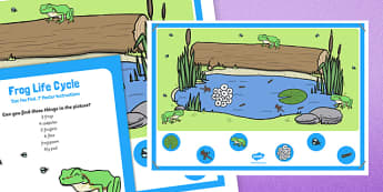 Frog Life Cycle Can you Find...? Poster and Prompt Card Pack