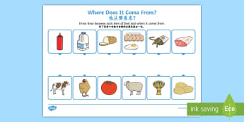 Where Does Food Come From Activity Sheet English/Mandarin Chinese - worksheet, Where Does Food Come From Worksheet - food,work sheet, where does food come from, origin