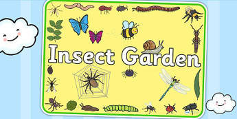 Insect Garden Sign - bugs, insects, minibeasts, investigation