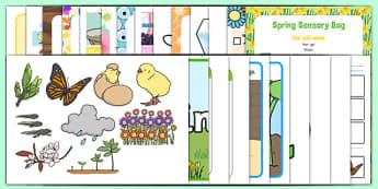 Childminder Springtime Resource Pack - Spring, Flowers, animals, EYFS