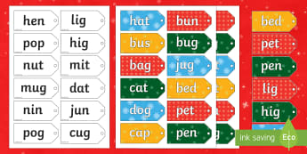 CVC Real and Nonsense Words Present Sorting Activity