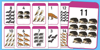 Nocturnal Animals Matching Activity Number Bonds to 20 - nocturnal, animals, matching, activity, number bonds, 20