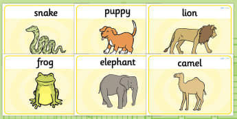 Basic Playdough Mats to Support Teaching on Dear Zoo - dear zoo, the zoo, dear zoo playdough mats, dear zoo sen playdough mats, dear zoo activities, basic playdough mats, sen