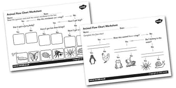 Animal Flow Chart Worksheet - animal flow chart, flow chart worksheet, cut and stick flow chart worksheet, classifying animals, ks2 science worksheet, ks2
