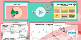 PlanIt - Science Year 4 - Living Things and Their Habitats Lesson 3: Invertebrate Hunt Lesson Pack - living things, habitats, variation, classification, invertebrates