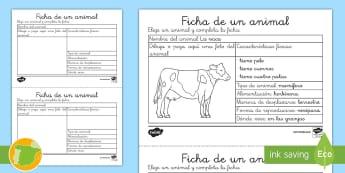 Ficha de actividad: Un animal - animales, clasificación, ficha, grupos, animal, descripción,