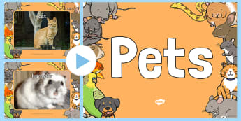 Pets Photo PowerPoint - pets, animals, pets photos, powerpoint, photo powerpoint, pets powerpoint, animals powerpoint, pets images, animals images