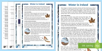 Winter in Ireland 5th and 6th Class Differentiated Reading Comprehension Activity - Differentiated Winter in Ireland Comprehensions ROI, winter, hibernation, deciduous, evergreen, hedg