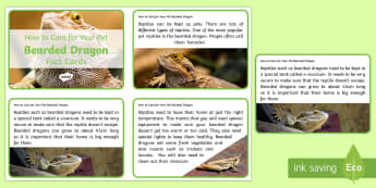 How to Care for Your Pet Bearded Dragon Fact Cards - animal welfare, pets, animals, reptiles, national pet month, pet month, petcare, pet care, lizards,