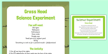 Grass Head Science Experiment - Growing, EYFS, water, sun, grass head, science, experiment