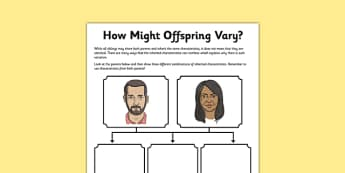 How Offspring Might Vary Activity Sheet - inheritiance, inherited trait, evolution, parent, offspring, worksheet