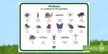Minibeasts Word Mat English/Italian - EAL, minibeasts. , minbeasts, minibeatss, mini beatss, mini beasts, minibeastes, wordmat