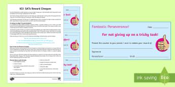SATs Survival Year 2: Reward Cheques Activity Sheets - SATs Survival Materials Year 2, SATs, assessment, 2017, English, SPaG, GPS, Worksheets, grammar, pun