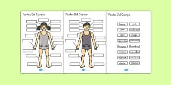 Actividad de etiquetar Las partes del cuerpo - mi cuerpo, esquema, vocabulario