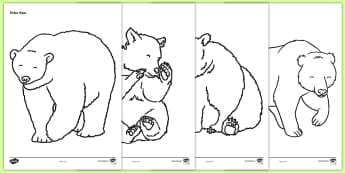 Bears Colouring Sheets -  Bears, bear, colouring, fine motor skills, poster, worksheet, animals, polar bear, koala bear, brown bear, grizzly bear, sloth bear,  bear resources