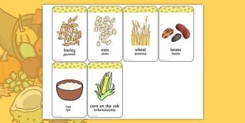 Harvest Grains Flash Cards Polish Translation - polish, harvest, grains, flash cards