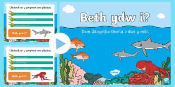 Gêm Pŵerbwynt Rhyngweithiol 'Beth ydw i?' O Dan y Môr - Ar Lan y Môr,Seaside, Under the Sea, under the sea, sea, Sea, seaside, Under the sea, beach, Beach,