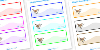 Editable Drawer - Peg - Name Labels (Wrens) - Wren Label Templates, Resource Labels, Name Labels, Editable Labels, Drawer Labels, Coat Peg Labels, Peg Label, KS1 Labels, Foundation Labels, Foundation Stage Labels, Teaching Labels