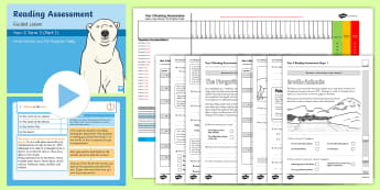 Year 2 Term 3 Paper 1 Reading Assessment Bumper Resource Pack - Year 2, Y2, reading, SATS, SAT, booklet, assessment, assess, KS1, fiction, non-fiction, review, pape