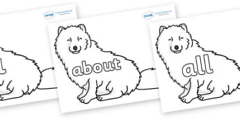 100 High Frequency Words on Arctic Foxes - High frequency words, hfw, DfES Letters and Sounds, Letters and Sounds, display words