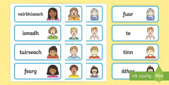 Emotions Word Cards-Gaeilge - Requests - ROI, Gaeilge, Irish, mé féin, feelings, emotions, mothúcháin, myself, conas atá tú,