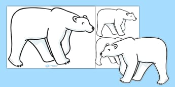 Editable Polar Bear (A4) - Polar Bear, bear, white, A4, bears, Ice, Arctic, cold, snow, animal, animals, wild