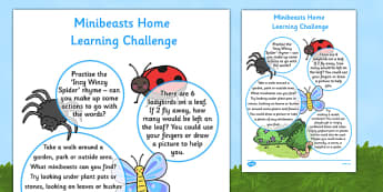 EYFS Minibeasts Home Learning Challenge Sheet Nursery FS1 - EYFS, homework, Early years, insects