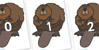 Numbers 0-100 on Beavers - 0-100, foundation stage numeracy, Number recognition, Number flashcards, counting, number frieze, Display numbers, number posters