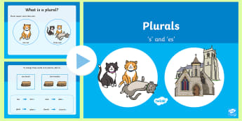 Plurals s and es Teaching PowerPoint - plurals, powerpoint, year 2, year 3 revision, grammar, spelling rules, plural,Australia