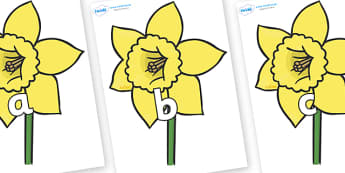 Phase 2 Phonemes on Daffodils - Phonemes, phoneme, Phase 2, Phase two, Foundation, Literacy, Letters and Sounds, DfES, display