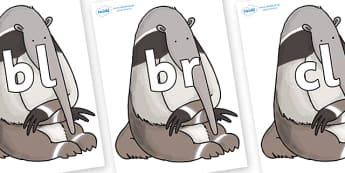 Initial Letter Blends on Anteater to Support Teaching on The Great Pet Sale - Initial Letters, initial letter, letter blend, letter blends, consonant, consonants, digraph, trigraph, literacy, alphabet, letters, foundation stage literacy