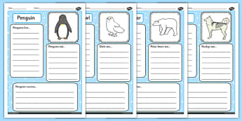Polar Animals Factfile Activity Sheet - worksheets, facts, information