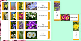 Frühlingsblumen Domino Spiel - Frühling, Spring, Frühblüher, Frühlingsblumen, Pflanzen, Blumen,German.