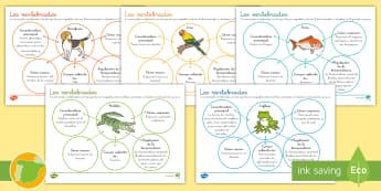 Hoja informativa: Características de los animales vertebrados - Los seres vivos, La célula, niveles de organización de la vida, clasificación de los seres vivos,