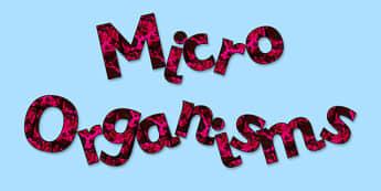 'Microorganisms' Display Lettering - microoraganisms, micro-organisms, micro organisms, microorganisms lettering, microorganisms display, organisms, ks2