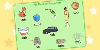 Final B Sound Word Mat - final, b, sound, word mat, word, mat