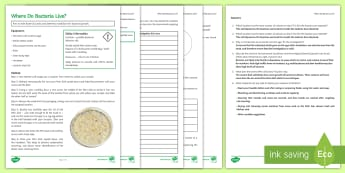 Where Do Bacteria Live? Investigation Instruction Sheet Print-Out - Investigation Help Sheet, science practical, method, instructions, bacteria, culture, growing bacter