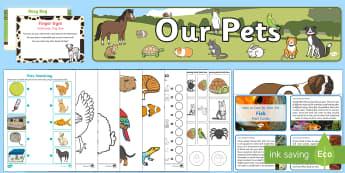 Childminder Pets EYFS Resource Pack - EYFS Pets, Animals, National Pet Month, child miner, childminding, vets, animal care