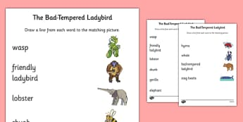 Word and Picture Matching Worksheet to Support Teaching on The Bad Tempered Ladybird - matching, sort