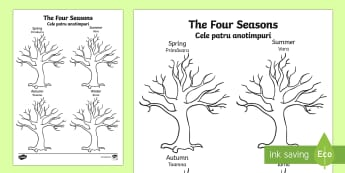 Four Seasons Tree Drawing Template English/Romanian - Four Seasons Tree Drawing Template - seasons, trees, plants, draw, seaons, tempelte, plnts, templet,