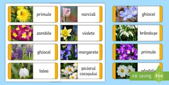 Flori de primăvară Cartonașe tip domino - jocuri, activități, joc, activitate., primăvară, primavara, domino, flori de primăvară, floril