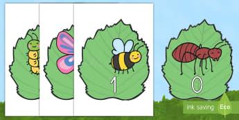 Números de exposición del 0 al 20 en bichos números de exposición - libélula, abeja, caracol, hormiga, típula, escarabajo, mariposa, oruga, gusano, mariquita, cochini