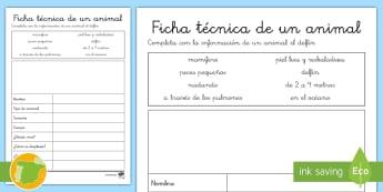Ficha de actividad: Ficha técnica de un animal - Delfín - delfín, ficha, técnica, información, características,Spanish