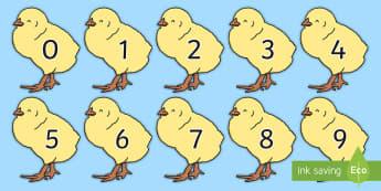 Rhifau 0-50 Cywion - rhifau, rhifedd, mathemateg, cyw, cywion, pasg, fferm, anifeiliaid, ,Welsh